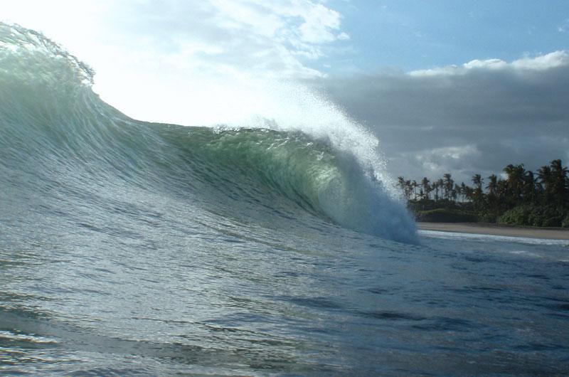 Surf WG surfcamp Bali java experience bali